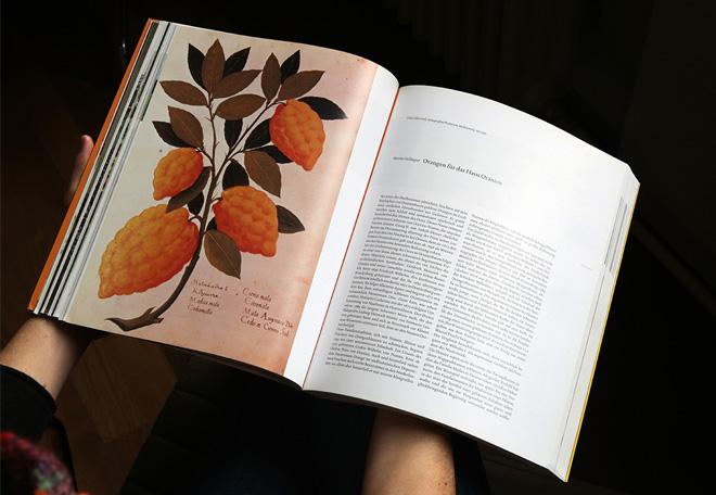 Katalog_innen_2